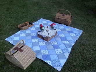 Picnic Set up for 4 Guests